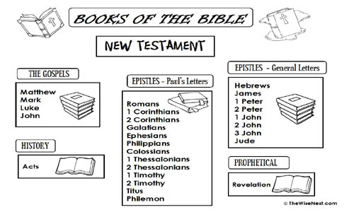 Books of the Bible The Wise Nest – Books of the Bible Worksheet