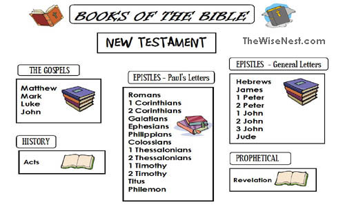 Books of the Bible The Wise Nest – Books of the Bible Worksheets