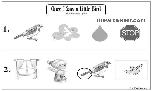 little bird 4 copy