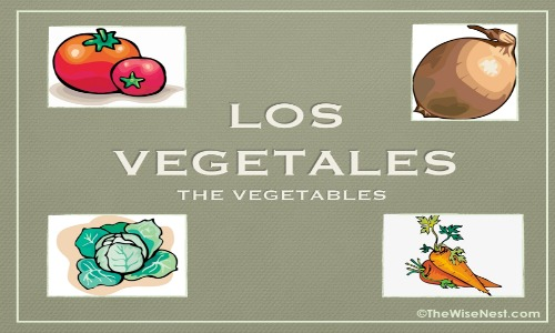 featured image vegetales